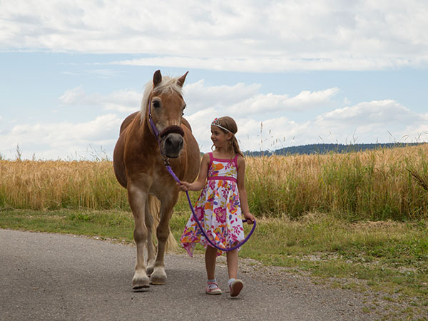 Ponyreiten - Kontakt mir der Natur