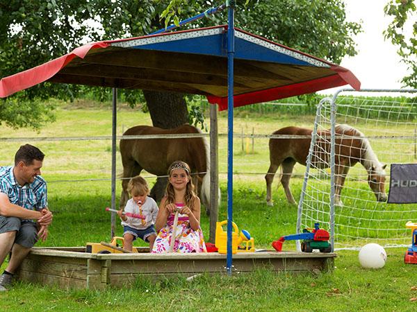Sandkasten für die Kinder und Pony-Reiten